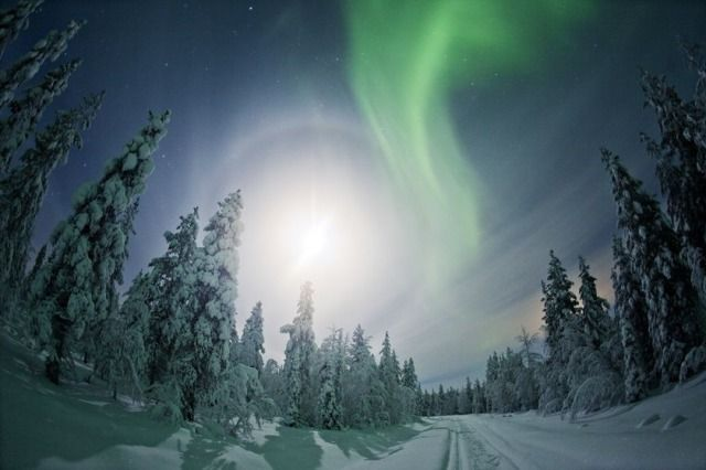 (Best Served Scandinavia) Family Holiday Bucket List: Chase the Northern Lights in Lapland (High up in the Arctic at just the right latitude, Nellim is one of the best spots to see the Northern Lights on a magical family holiday. There's so much to do in Finnish Lapland that the kids may never want go home! On a four-day tailor-made family break with Best Served Scandinavia, you'll spend three nights at the cosy Nellim Wilderness Hotel, where you can enjoy sky gazing, dog sledding across...)