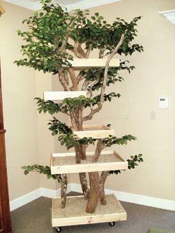 Wooden cat tree