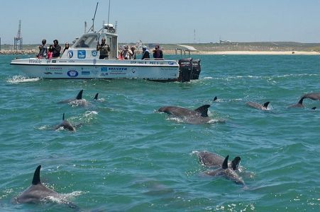 Raggy Charters in Port Elizabeth. Eastern Cape. South Africa