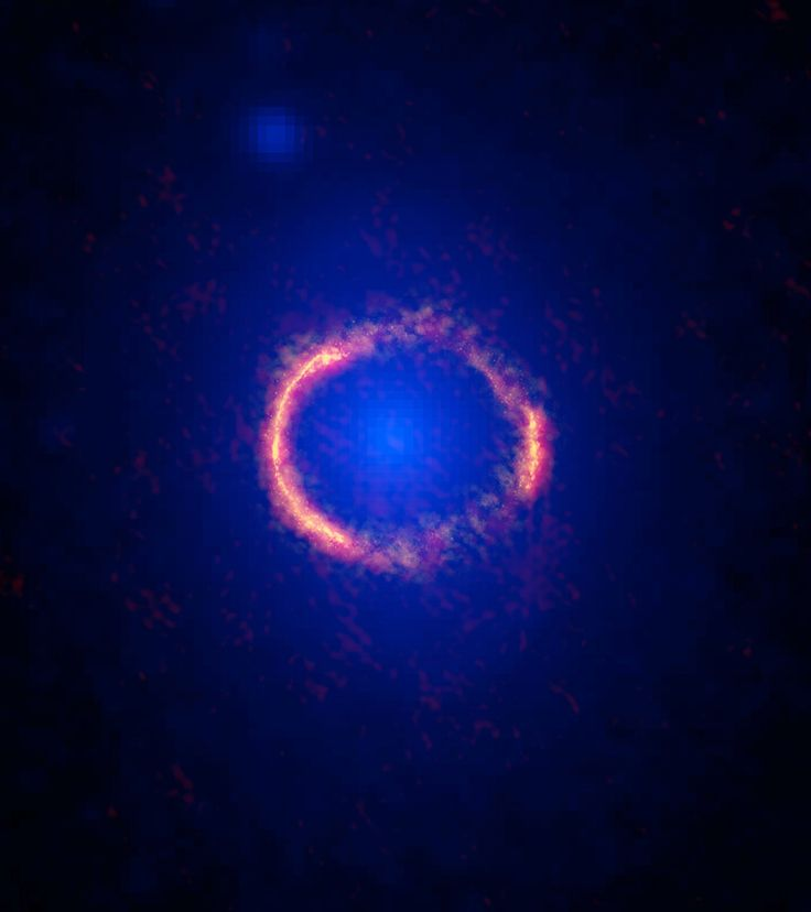 An ALMA/Hubble composite image of the gravitationally lensed galaxy SDP.81. The diffuse blue element at the center of the ring is from the intervening lensing galaxy, as seen with the Hubble Space Telescope.<br />Credit: ALMA (NRAO/ESO/NAOJ): B. Saxton NARO/AUI/NSF: NASA/ESA Hubble, T. Hunter (NARO)