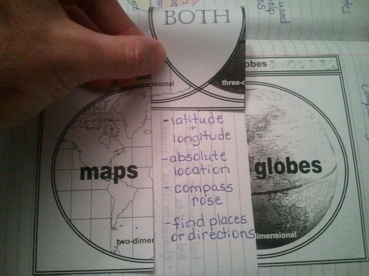 11) Social Studies: This flip book will help the students to identify what maps and globes have in common with each other as well as what makes them different from one another. They can jot down the facts underneath these visual Venn Diagrams and remember them for the test.