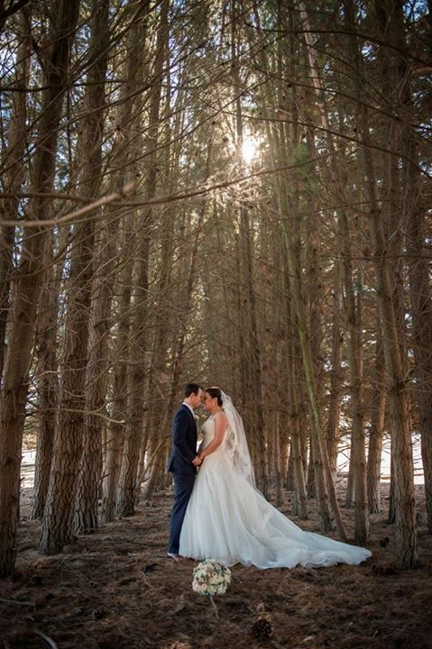 A special moment in the pine forest. (Photo by What Pete Shot)
