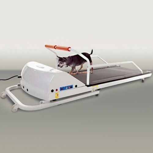 GoPet Petrun Pr710 Foldable Dog Treadmill Indoor Exercise / Fitness Kit - For Dogs Upto 44 Pounds *** Read more at the image link. (This is an affiliate link and I receive a commission for the sales)