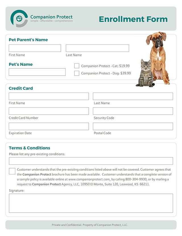 Pet Insurance Enrollment Form Design Form Design Credit Card First Pet Names