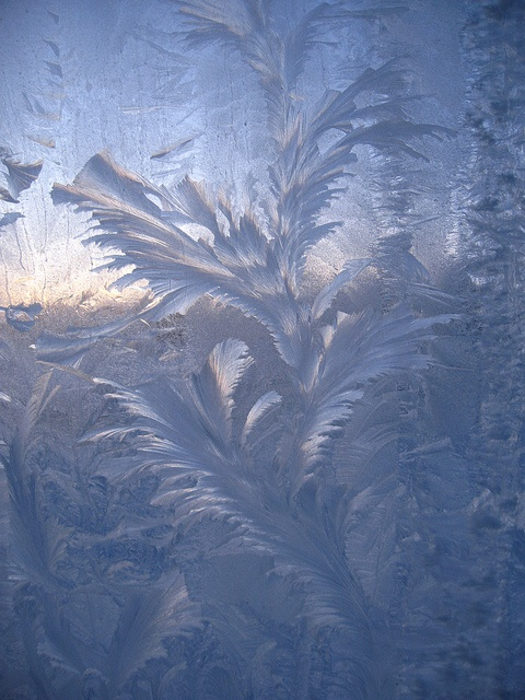 Frost on window