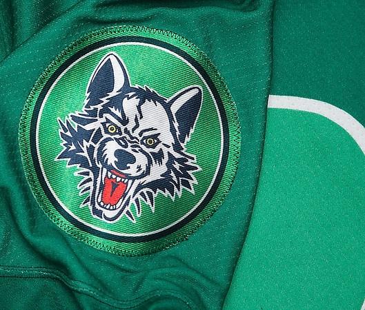 Chicago Wolves St Patricks jerseys