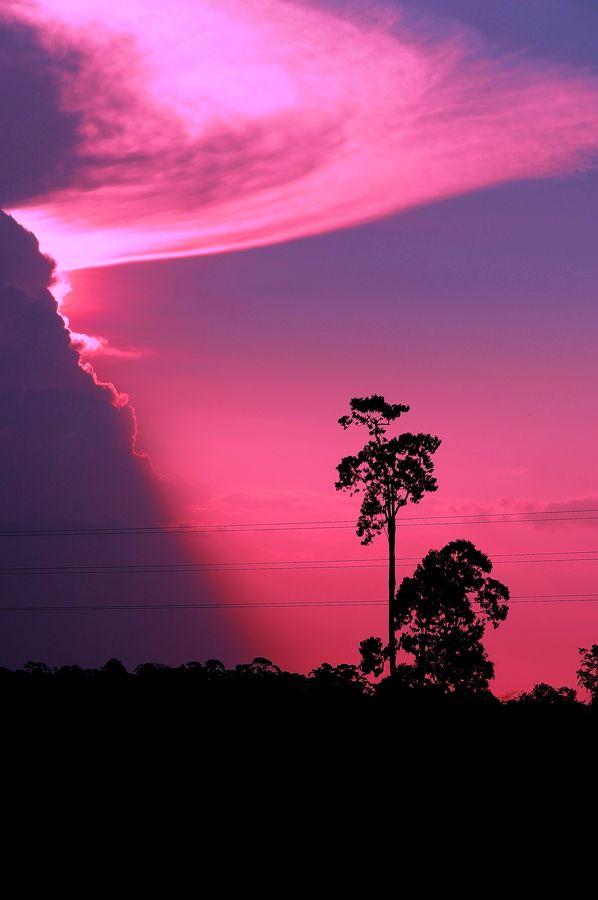 Paramaribo, Suriname  (Source: 500px.com)