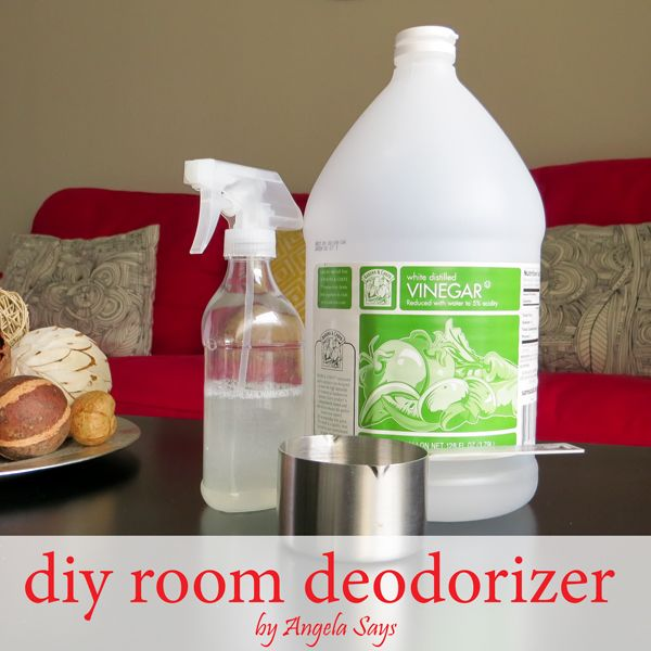How to Get Rid of the Musty Smell {DIY Room Deodorizer}