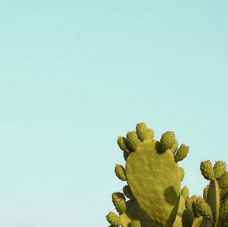 Touristic Minimalist Photography – Fubiz Media