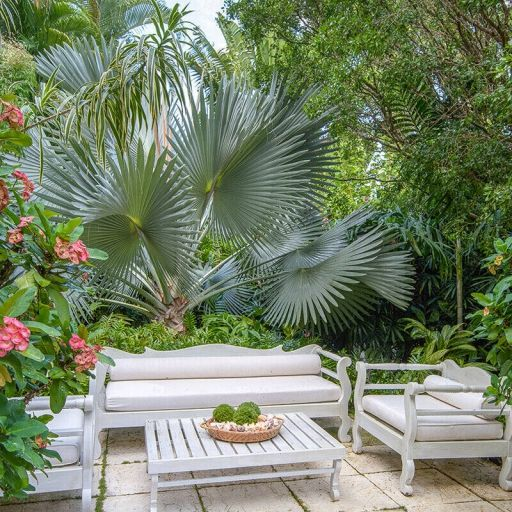 Backyard Garden Landscape, Backyard