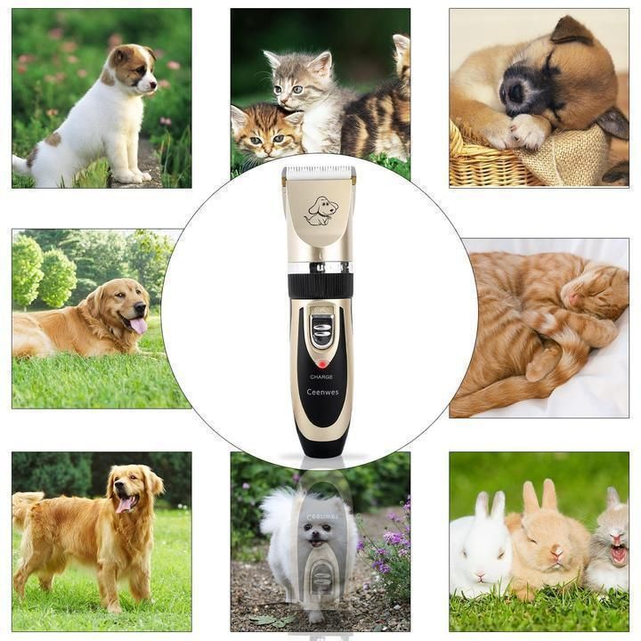 Dog Hair Clipper Electric Quiet Pet Trimmer Professional Grooming Kit For Cats And Dogs Check Out T Dog Grooming Clippers Dog Grooming Supplies Cat Grooming