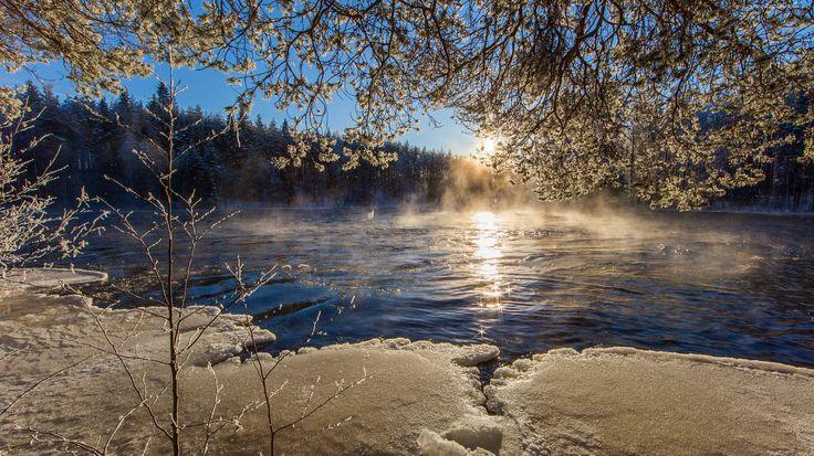 Zima, Wschód, Słońca, Rzeka, Las, Mgła
