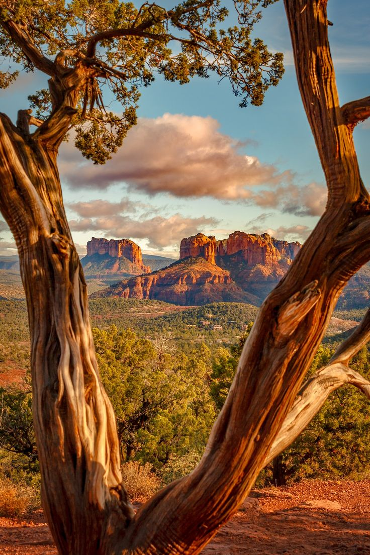 Sedona morning, Arizona. Photo by David Curry.