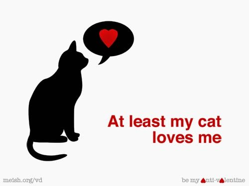 Top 10+* } Anti Valentine\'s Day 2016 Quotes and Sayings ...