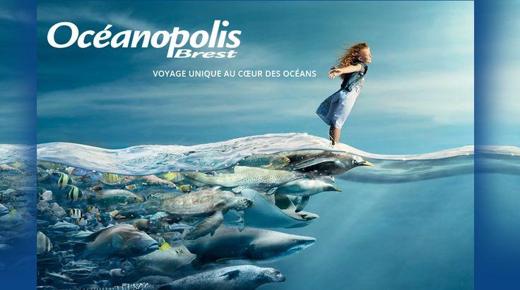 Offres spéciales Océanopolis #Brest pour les clients d'Ewa #Roscoff http://www.villa-vacances-bretagne.fr/actualites/121-offres-oceanopolis-brest-location-ewa-roscoff.html