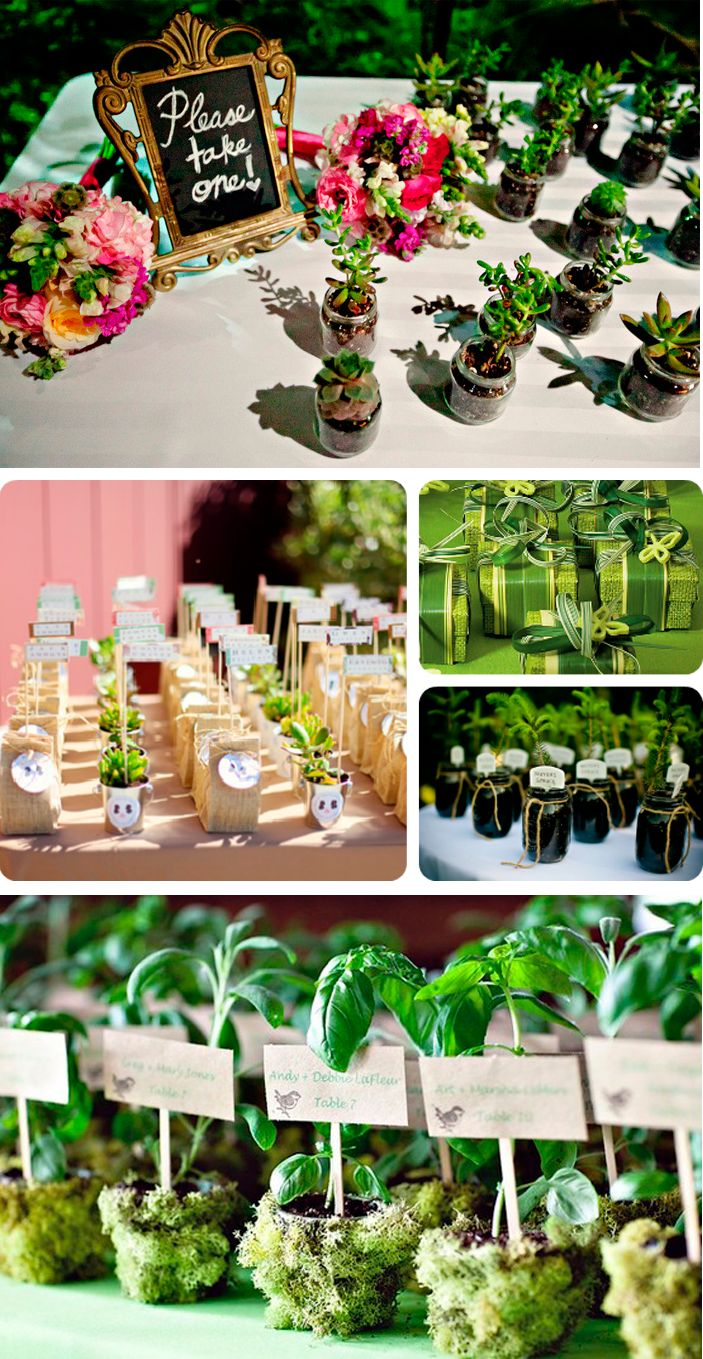 eco-freindly-wedding-favor