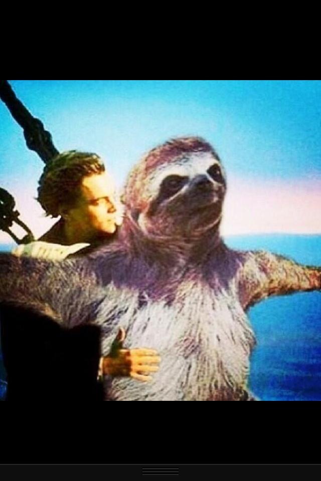 Sloth of the worrrrlllddd