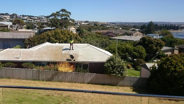 Pressure washing a roof with a view!