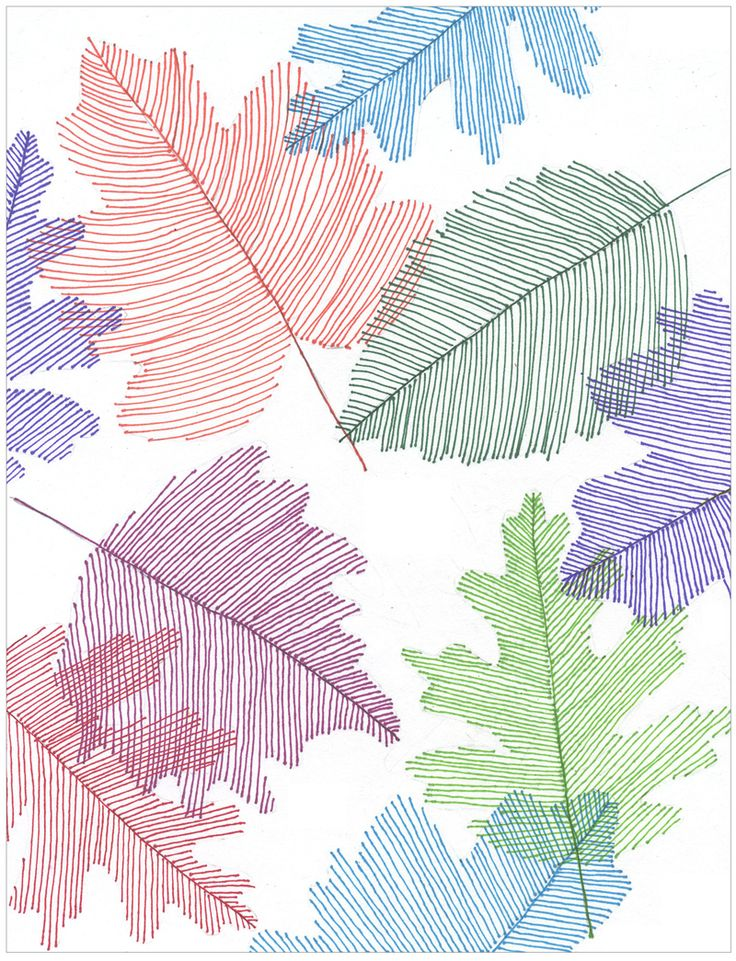 Transparent Line Art Leaves – Briana Jo