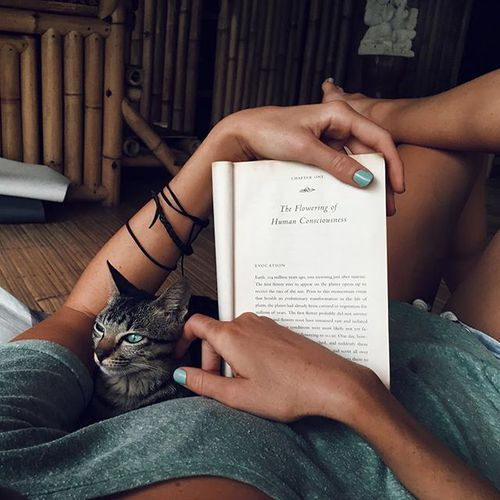 Everyday Moments | Pinterest: mary*