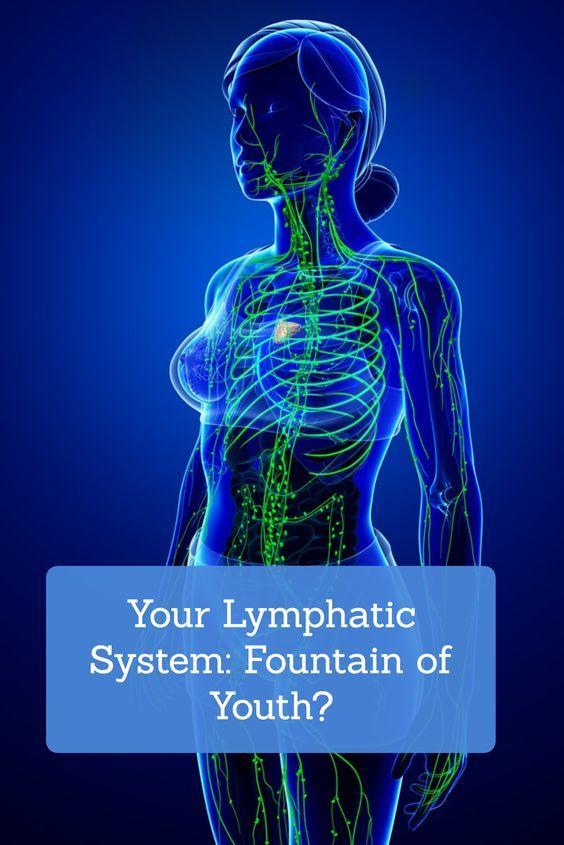 Your Lymphatic System: Fountain of Youth | healing food