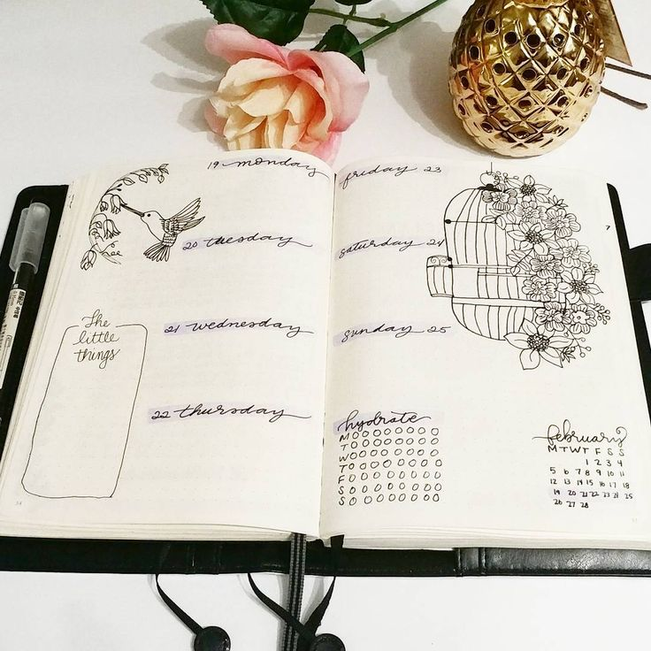 Bullet journal weekly layout, flower drawing, bird drawing, birdcage drawing. | @msstephspapercrafts