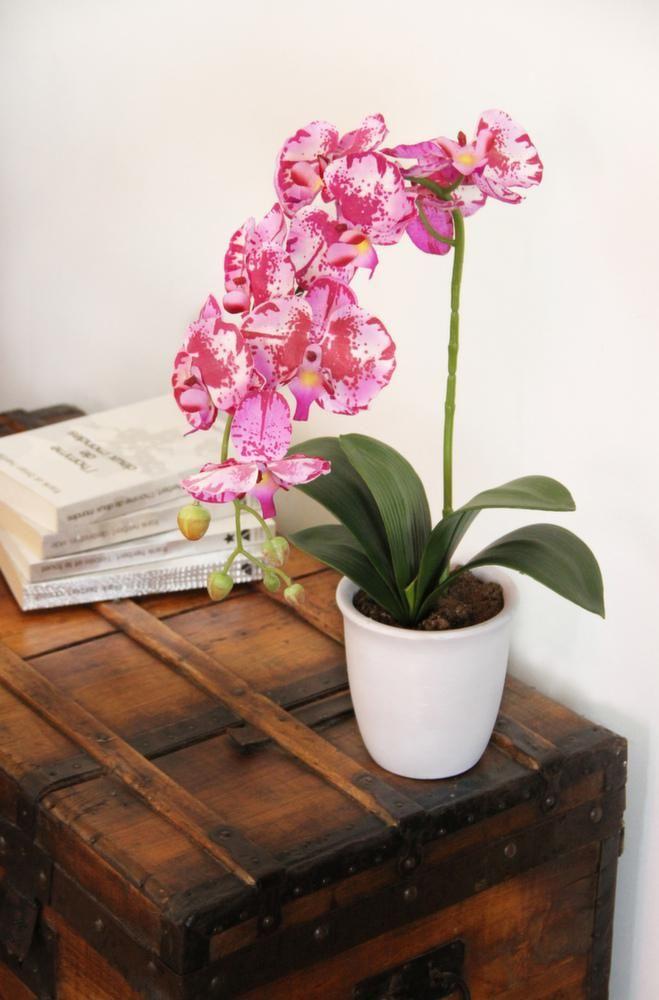 les 25 meilleures id es de la cat gorie plante artificielle exterieur sur pinterest plantes. Black Bedroom Furniture Sets. Home Design Ideas