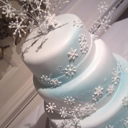 Gorgeous winter themed wedding cake @Amy Moore.co.uk