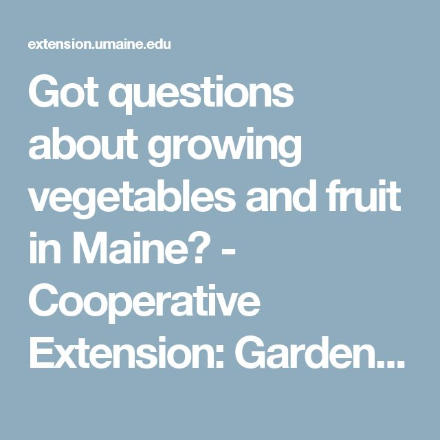Got questions about growing ve ables and fruit in Maine Cooperative Extension Garden & Yard University of Maine Cooperative Extension