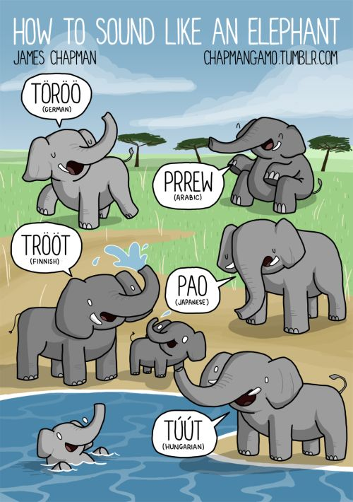 Why isn't there a English elephant sound! This is a new page from the Soundimals Book.There a even more new animals in there and loads of new sounds!And it's available for special pre-order price of £5 twitter|facebook|instagram|shop