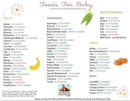 MamaCheaps.com: Free Printable Baby Food Chart