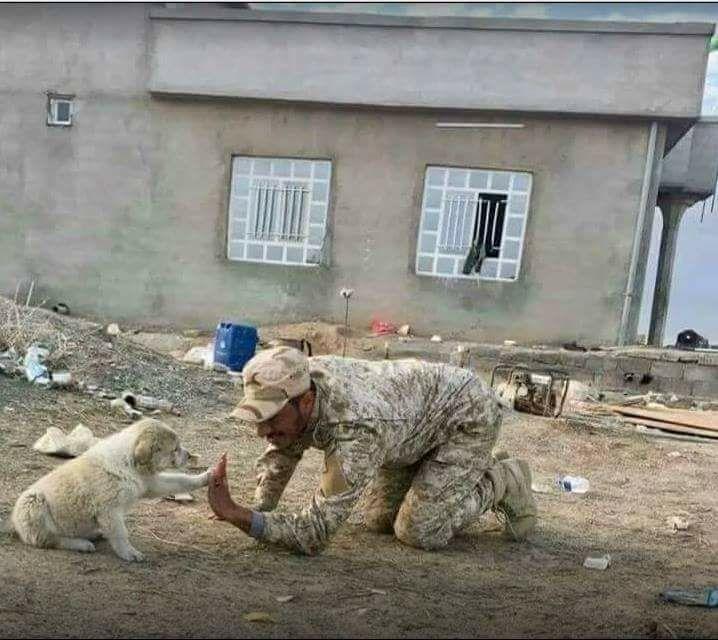 Iraqi army in Mosul بين اصوات الرصاص ... و اصوات المدافع ... وعويل النساء... و بكاء الأطفال ... بين كل هذا و ذاك ... يختبئ السلام ... الذي سوف ينهض من جديد... بعد ان يتعب كل هؤلاء !!!
