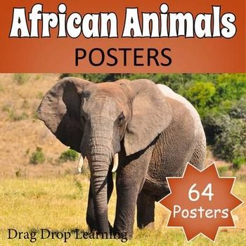 African Animals Posters for classroom decor. 64 beautiful half page printable posters.