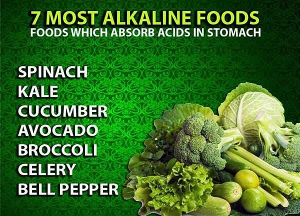 Health: foods which absorb acids in the stomach x