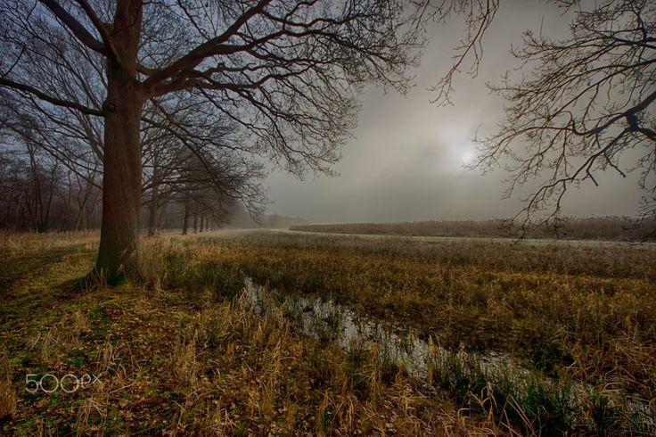 Naardermeer 4 - The Netherlands by Edgar Tossijn on 500px