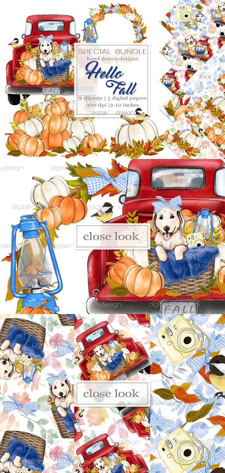 Autumn Clipart and Digital Paper Watercolor Clip Art Pattern