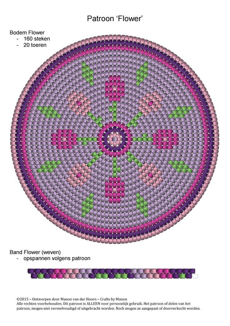 Base circular 53