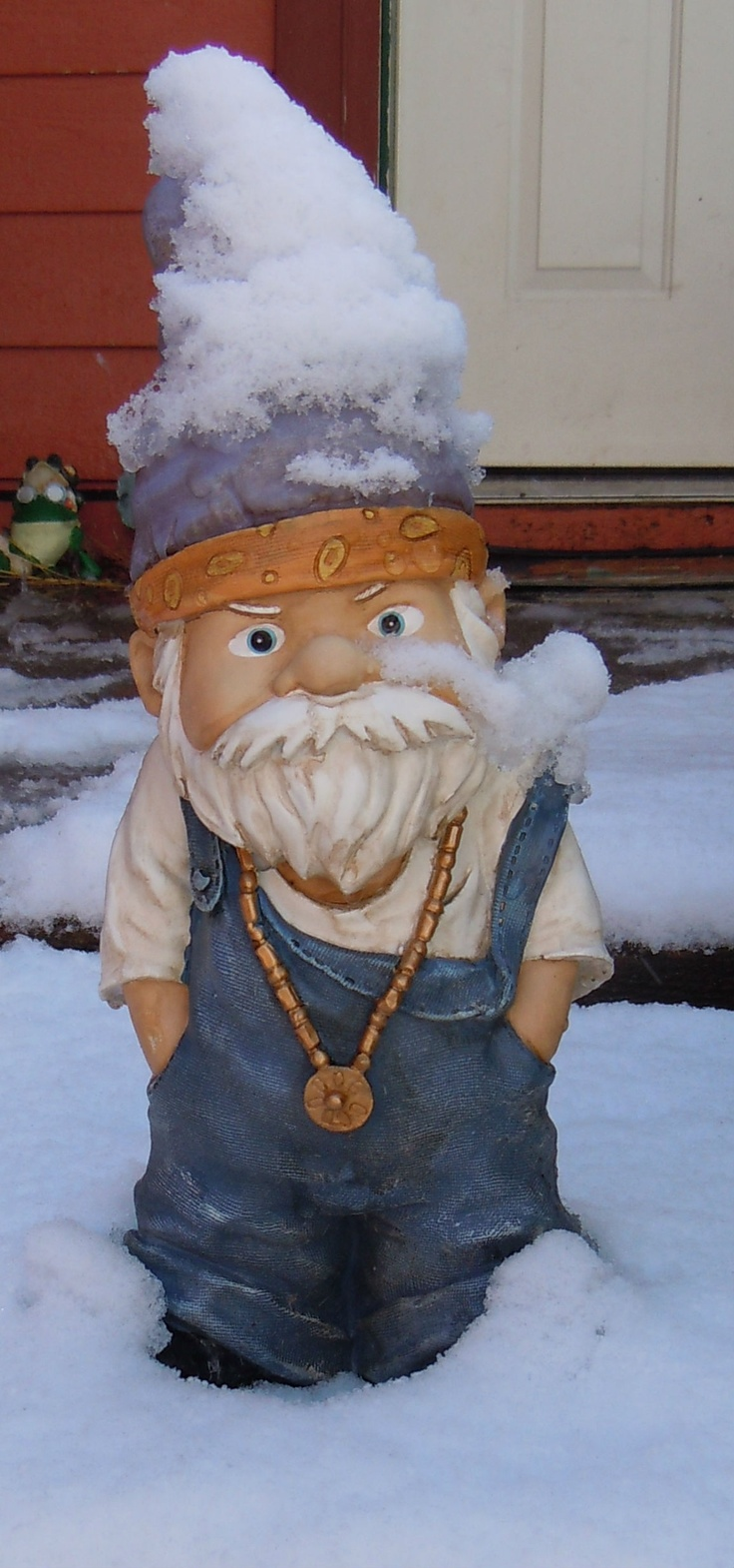 Gnome In Garden: 164 Best Gnome Memes: Funny Gnomes Images On Pinterest