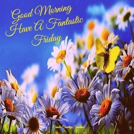 Good Morning Friday quotes quote friday happy friday tgif days of the week friday quotes friday love happy friday quotes