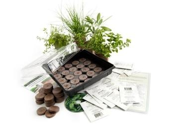 Indoor Culinary Herb Garden Kit - 12 different herbs for my kitchen. I love fresh herbs!