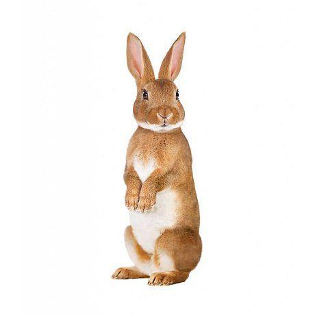 KEK Амстердам стикер стены лесные друзья кролика