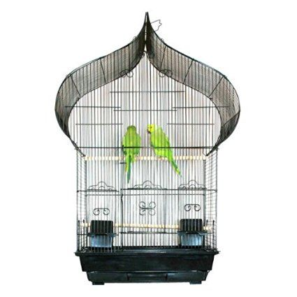 Amazon.com : NEW Oriental Top Canary Parakeet Cockatiel LoveBird Finch Bird Cage…