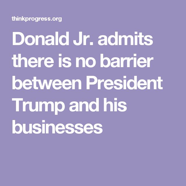 Donald Jr. admits there is no barrier between President Trump and his businesses