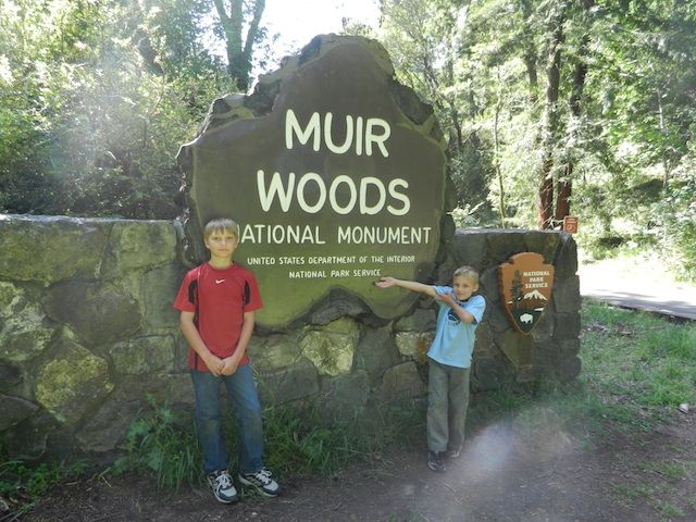 Muir Woods National Monument (Northern California)