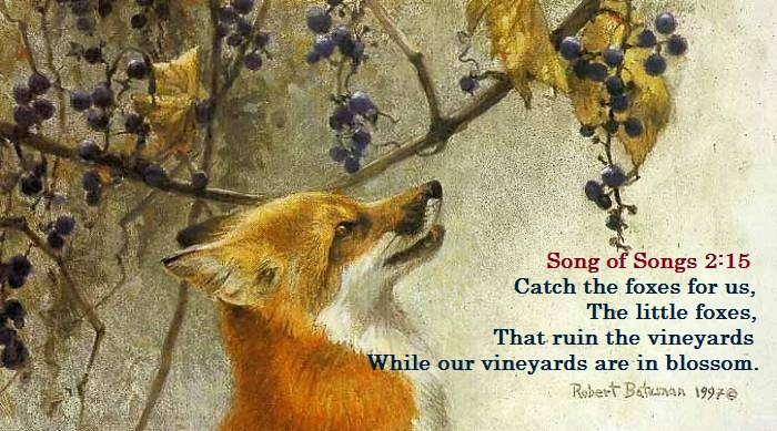 Pin by Sarah McNeal on Bible Truth - Christian   Wildlife art, Wildlife artists, Painting
