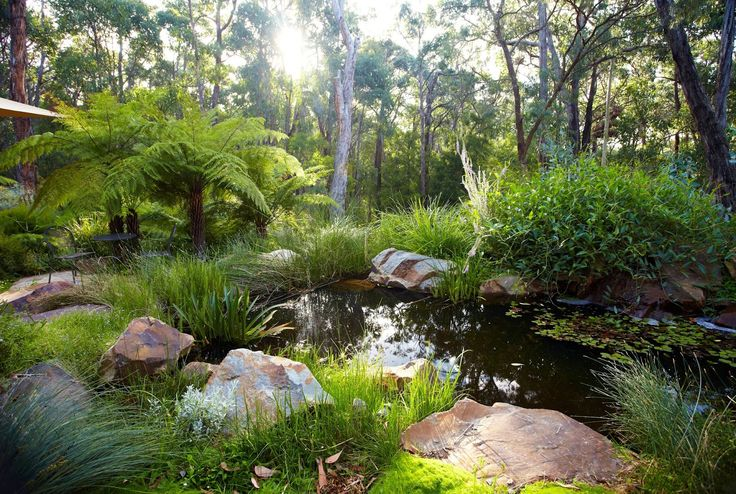 by Phillip Johnson Landscapes - use his books as a resource