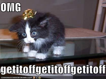 No likey.  #cat #humor #cats #funny #lolcats #humour #meme #cute #quotes =^..^=  www.zazzle.com/kittyprettygifts