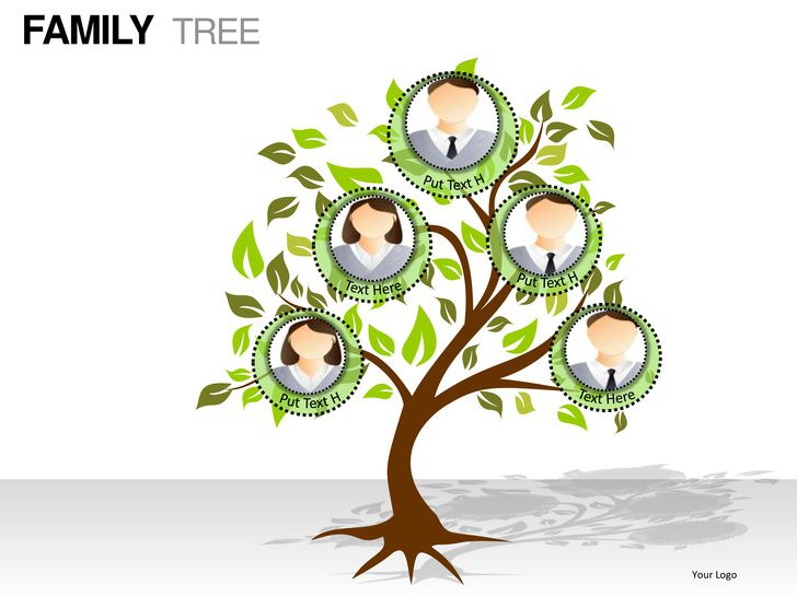 Family Tree Template 7 Members Yahoo Search Results Yahoo Image Search Results Family Tree Template Tree Templates Family Tree