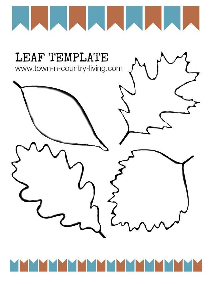 17 best ideas about leaf template on pinterest leaf images leaf patterns and leaf stencil. Black Bedroom Furniture Sets. Home Design Ideas