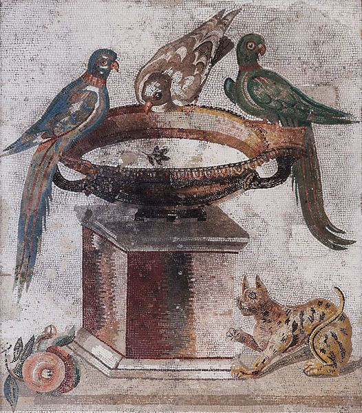 Mosaique romaine - Pompei - Musée archéologique de Naples